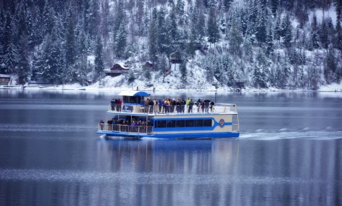 Lake Coeur d'Alene is the perfect place to take family and friends to see the beauty of North Idaho. Make the experience even more magical with an Eagle Watching Cruise.
