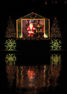 Holiday Light Show (47) (1)